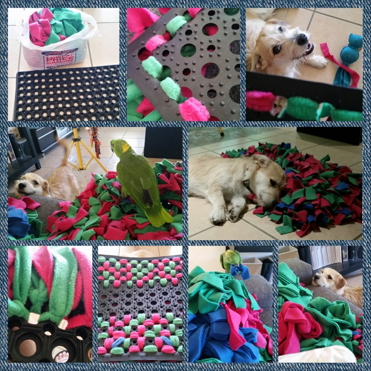 Dog Ate Some Rug: Making A Snuffle Mat
